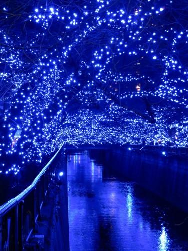 中目黒「青の洞窟」
